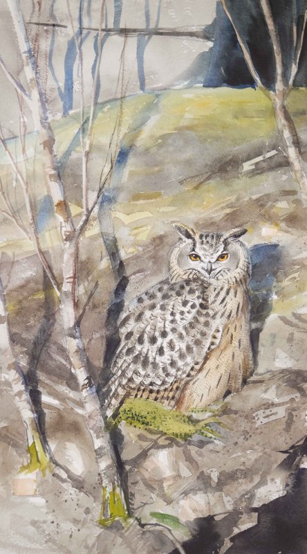 Kalliorinteellä (huuhkaja) - akvarelli