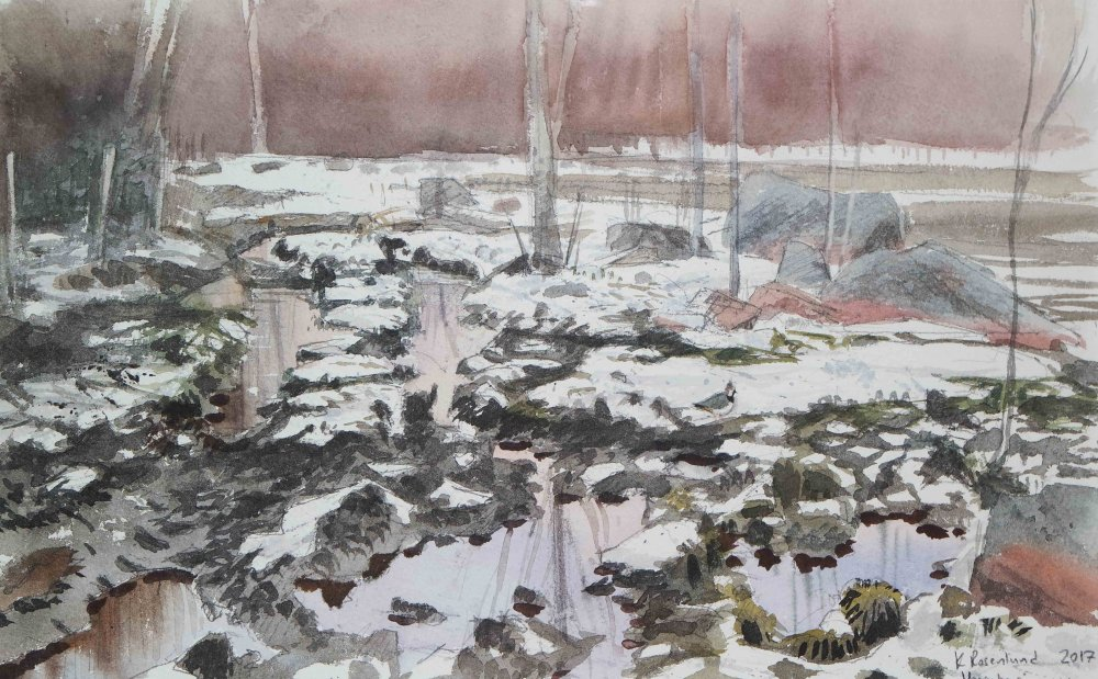 Lumi sulaa laitumella (töyhtöhyyppä) -